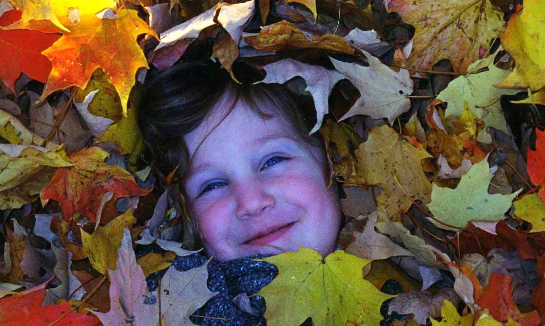 leaffairy1.jpg