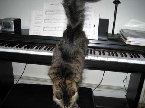 piano4.jpg