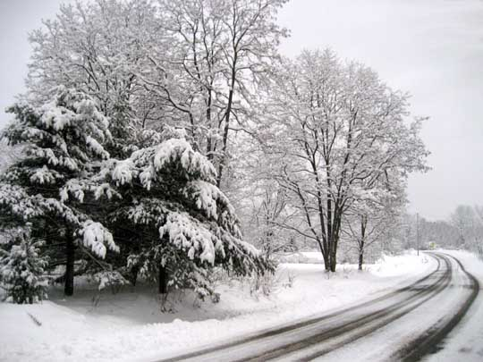 snowy-road.jpg