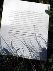 grass-paper1.jpg