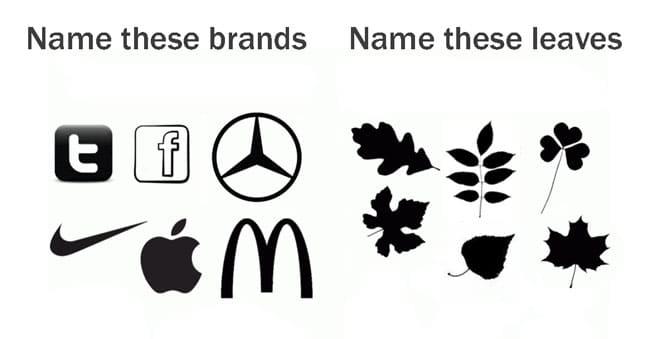 brands vs nature