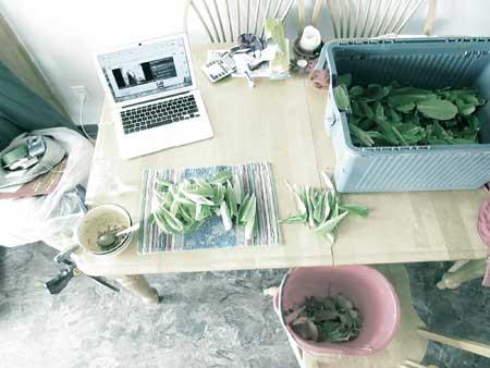 Small-scale-farming-w