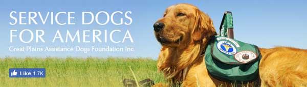 service dogs of america