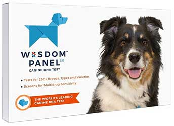 Dog DNA test kit