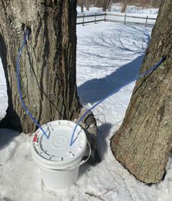 tubes into bucket